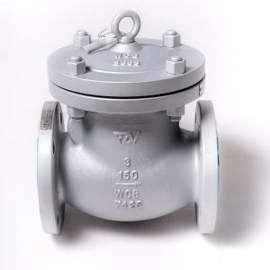 FZV Swing Check valve